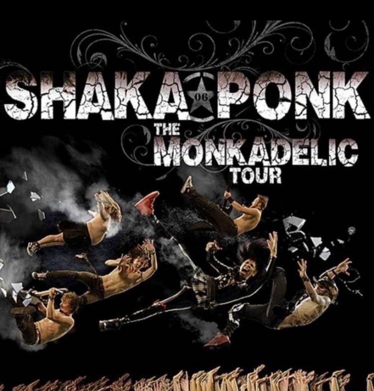 Shaka Ponk concert halle tony garnier